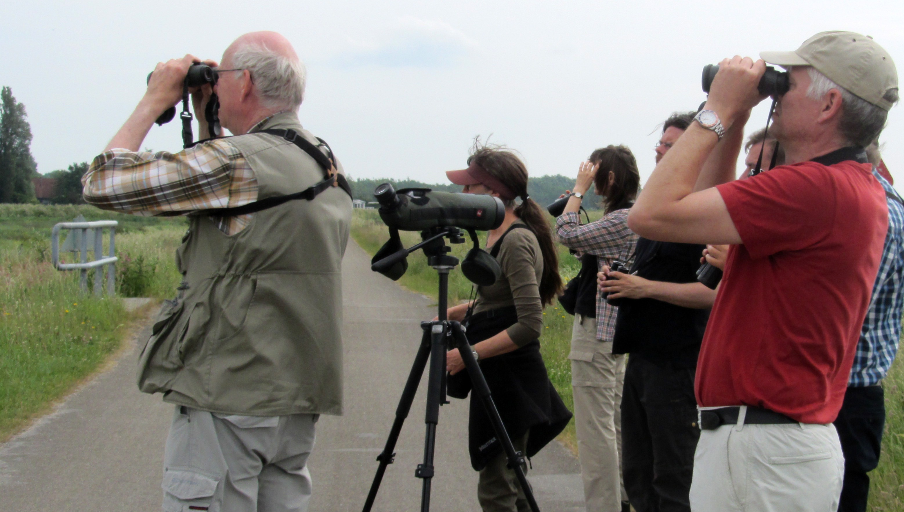 A group of ornithologists look through their binoculars