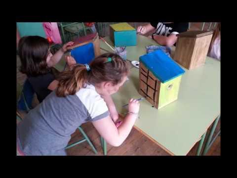 Taller de fabricación de cajas nido