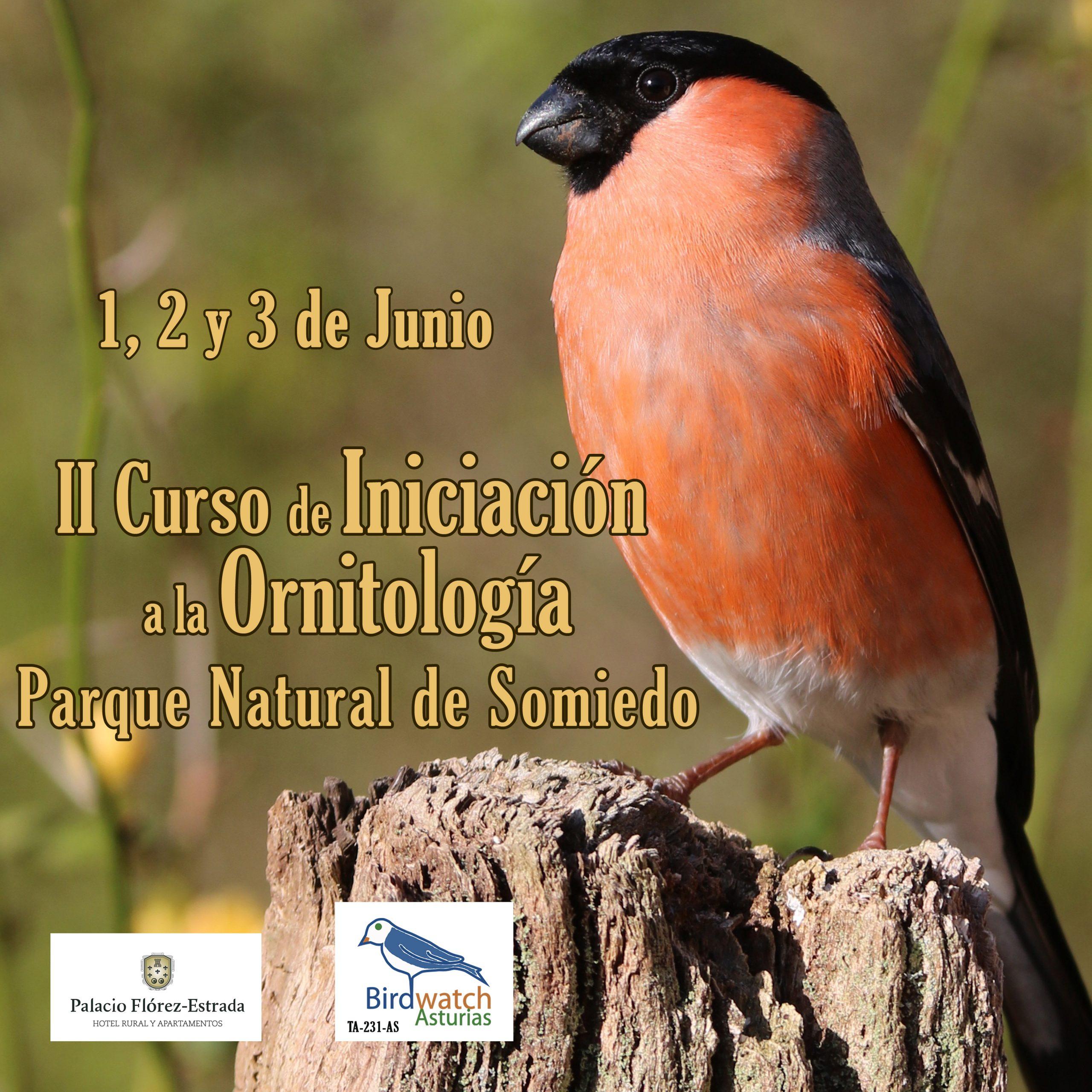2º Curso de iniciación a la ornitología en Somiedo