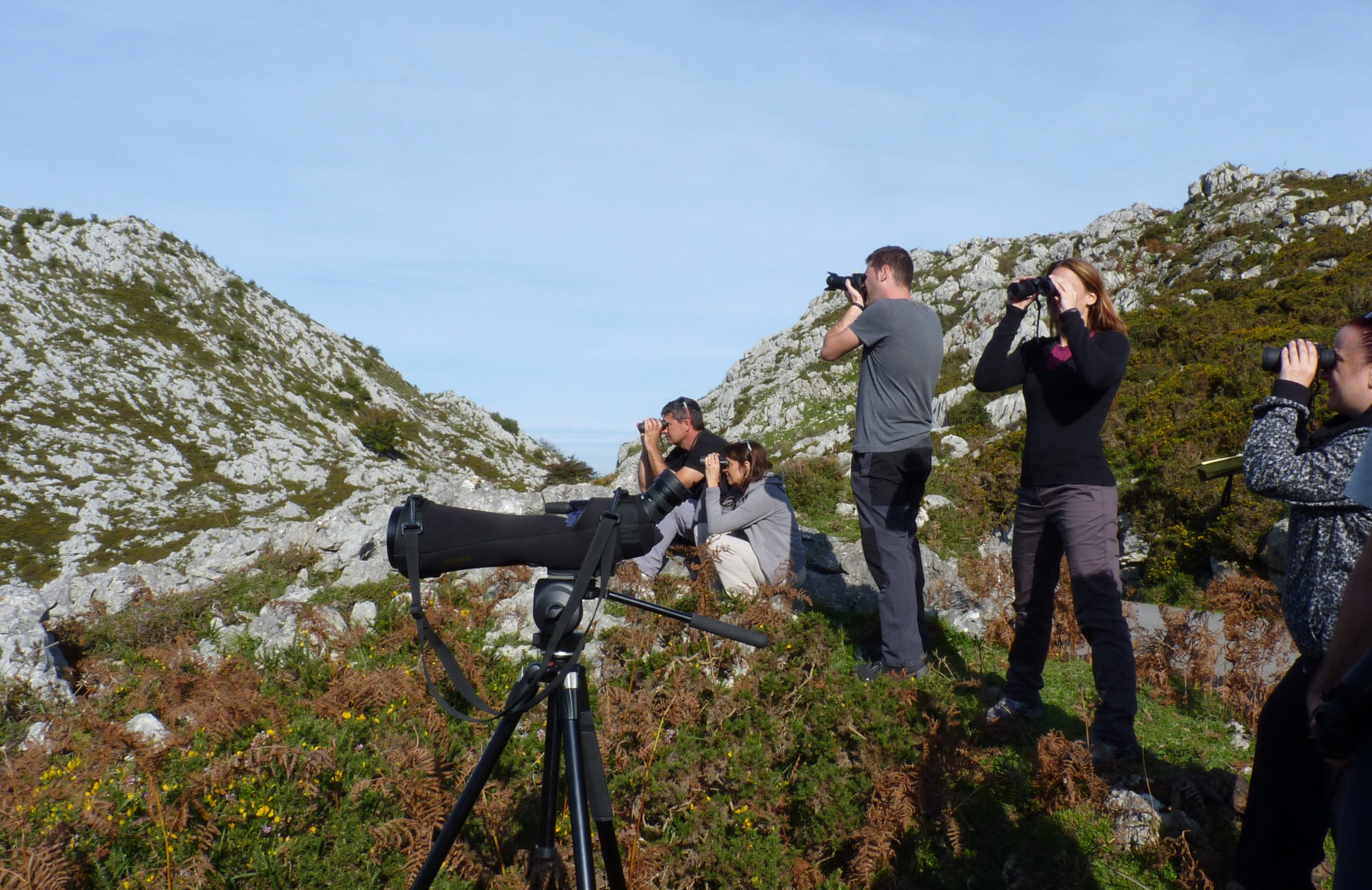 Where to watch birds in Eastern Asturias on 1st of May weekend