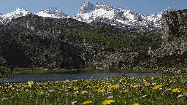Ercina Lake (Covadonga Lakes, Asturias)