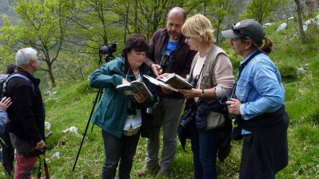 Participantes consultando las guías de aves para identificar una especie