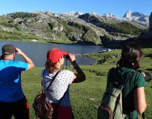 Viendo pájaros en el Lago Ercina